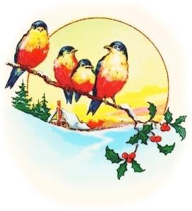 birds_on_holly